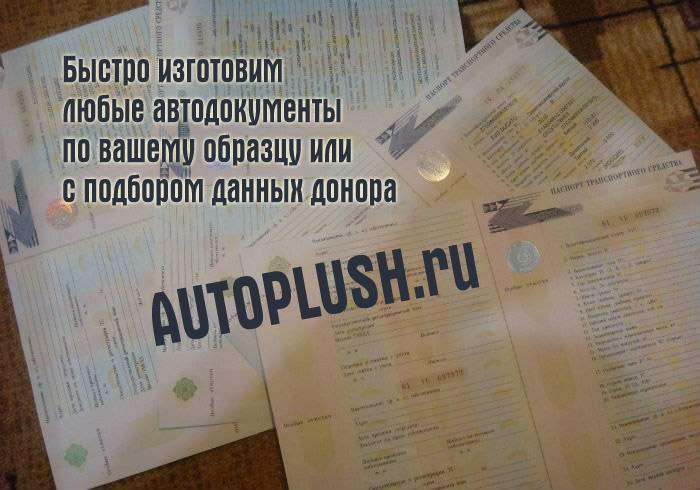 У нас можно купить документы на передвижение - ПТС, СОР, номера, ОСАГО, ПСМ.